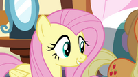 "Fluttershy ""what kind of a rock are they?"" S4E18"