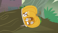 Hollow pumpkin of panicked mice S5E23
