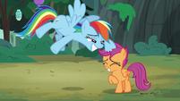 Rainbow Dash ruffles Scootaloo's mane S7E16