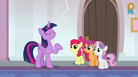 Twilight Sparkle addressing the Crusaders S8E12