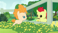Bright Mac -hold a buttercup under your chin- S7E13