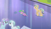 Crystal Pony walking up to Spike S4E24