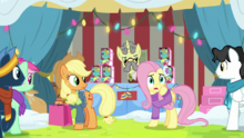 Fluttershy they are all so different MLPBGE.png