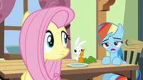 Rainbow Dash --maybe like seventy percent-- S6E11