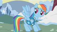 Rainbow Dash briefly flaps her wings S1E11