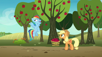 Rainbow Dash looking embarrassed S8E5