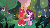 Sugar Belle asks Big Mac if he's okay S9E23