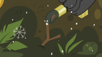 Twig gets added to the moss pile S8E16