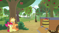 AJ and Apple Bloom hide behind a tree S9E10