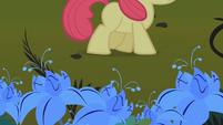 Apple Bloom waking by the poison joke S1E09