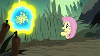 "Fluttershy ""flash bees can get pretty aggressive"" S7E25"