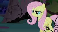Fluttershy listens to the CMC S1E17