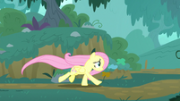 Fluttershy racing through the forest S8E18