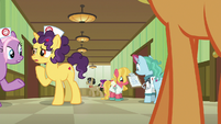 Nurse ponies and patients in the hospital hallway S6E23