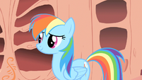 """Rainbow Dash to friends """"I'm gonna go rest up"""" S1E16"""