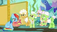 Applesauce -Applejack put you up to this-- S8E5