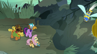 Fluttershy, Twilight, and Cattail return to the hive S7E20