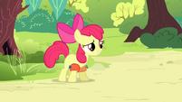 S04E20 Apple Bloom chce wskoczyć do wody