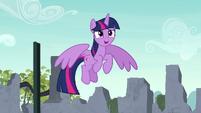 """Twilight """"to be whatever Equestria needs"""" S9E3"""