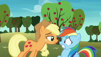 Applejack getting in Rainbow Dash's face S8E5