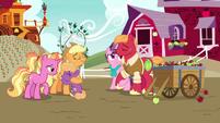 Applejack hugs Big Mac and Sugar Belle's son S9E26