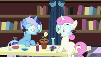 Filly Minuette and Twinkleshine grow a flower S7E1