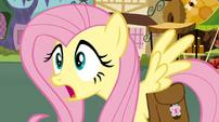 Fluttershy shocked2 S02E19