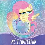 MLP Pony Life Amazon.com promo - Meet Fluttershy 2