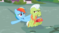 Rainbow Dash here we are S2E8