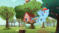 Rainbow Dash looking for Scootaloo S8E20