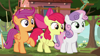 "Apple Bloom ""we're the Cutie Mark Crusaders"" S8E12"