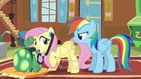 "Fluttershy hears Rainbow asking ""Well?"" S5E5"