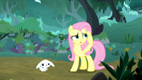 Fluttershy listening for the sound S8E18