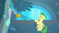 Pegasus stallion pulls on Gallus' tail S8E26