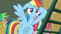 Rainbow Dash's world is heavily rocked S8E20