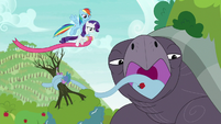 Rainbow and Rarity appear with spool of ribbon S9E13