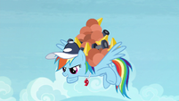 Rainbow carrying equipment on her back S9E15