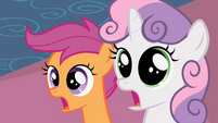 Scootaloo & Sweetie Belle Shock S2E6
