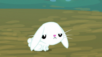 Angel Bunny exhausted and annoyed S8E18