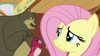 Fluttershy smiling at lonely Harry S7E5