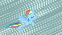 Rainbow Dash before losing her wings S02E01