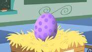 Spike egg close-up