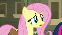 """Fluttershy """"maybe there's somepony we can ask"""" S7E20"""