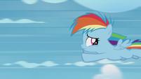 Rainbow Dash flying away from Twilight S5E25