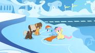 S01E23 Rainbow staje w obronie Fluttershy