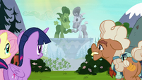 Twilight, Fluttershy, Ma, and Big Daddy look at the fountain S5E23