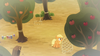 Applejack checking her cage trap S9E10