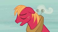 """Big McIntosh """"she's a real pony"""" S7E8"""
