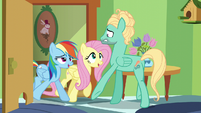Fluttershy and Rainbow drive Zephyr back inside the room S6E11