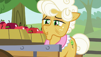 """Goldie Delicious """"it's hard to say for sure"""" S9E10"""